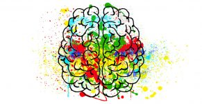 Bachelor of Psychology<p> Master of Social, Cognitive and Affective Neuroscience